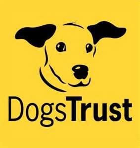 dog trust logo