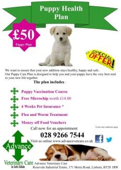 Puppy Health Plan